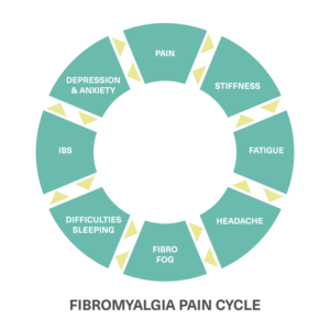 Fibromyalgia Pain Cycle